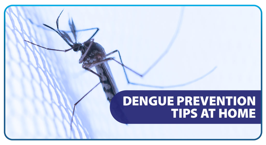 Dengue Prevention Tips at Home