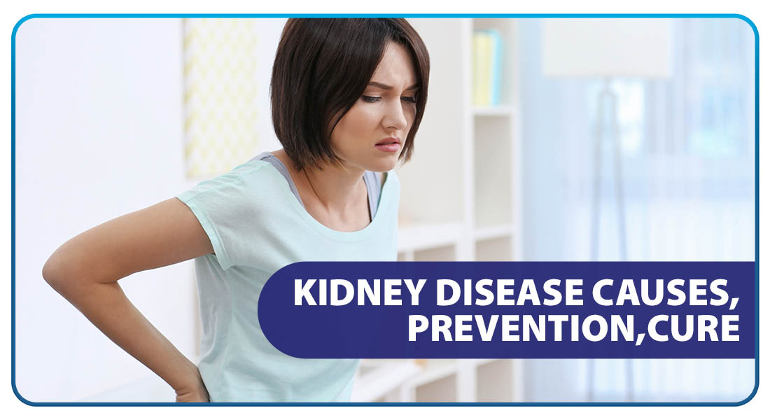 Kidney Disease: Causes, Prevention, Cure