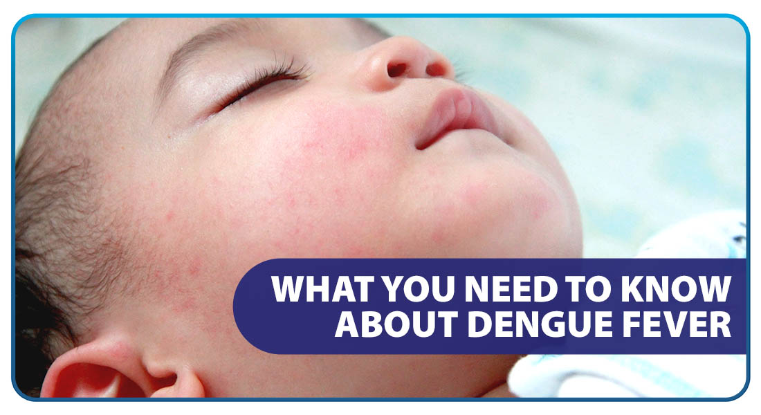 What You Need To Know About Dengue Fever